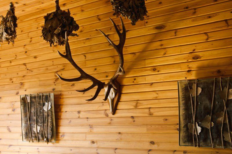 Prefab hunting cabin in VA