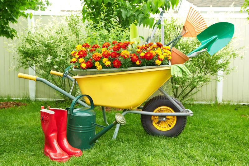 Sheds for storing garden supplies
